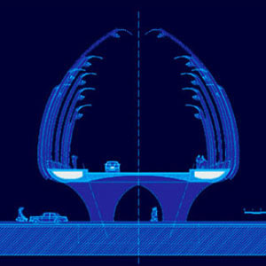 Ponte-a-Kinshasa-home